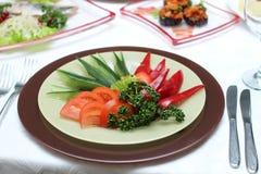 Piatto di verdure Fotografia Stock Libera da Diritti