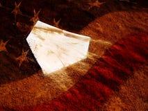 Piatto domestico e l'America Fotografia Stock