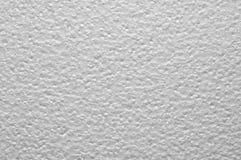 Piatto grigio della schiuma di stirolo Fotografia Stock Libera da Diritti