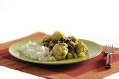 Piatto indiano tradizionale - Saag Aloo Fotografie Stock Libere da Diritti