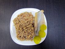 Piatto pronto che consiste dell'aringa, del grano saraceno e dei cetrioli marinati immagine stock