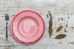 Piatto rosa sulla tavola con le spezie Immagini Stock