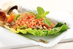 Piatto vegetariano immagine stock libera da diritti