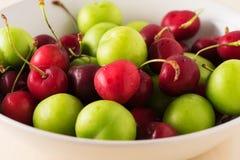 Piatto verde e rosso della frutta con la buona fine della luce su Immagini Stock