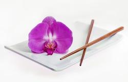 Piatto vuoto dei sushi Immagini Stock
