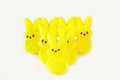 Piaulements de lapin de sucrerie de Pâques Photos libres de droits