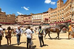 Piazza del Campo Siena, Tuscany, Italien Royaltyfri Bild