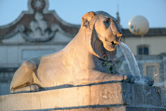 Piazza del popolo Royalty-vrije Stock Foto's