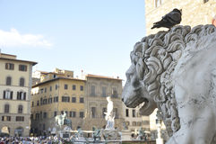 Piazza della Signoria in Florence, Italy. In the foreground stone lion statue in the background (out of focus) Piazza della Signoria in Florence, Italy stock photo