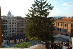 Piazza di Spagna, spanische Schritte, Piazza, Baum, Stadt, Stadt Stockfotos