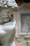 Piazza Navona. Fontana del Nettuno in Piazza Navona Royalty Free Stock Image