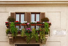 Piazza Navona one of the most famous squares in Rome, Italy. Balcony with flowers on Piazza Navona - one of the most famous squares in the world, and the most Royalty Free Stock Images