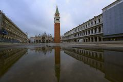 Piazza San Marco in the morning stock images