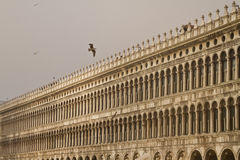 Piazza San Marco Venice Royalty Free Stock Photo