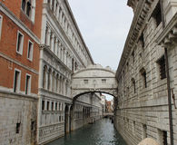 Piazza San Marco, Venice Royalty Free Stock Photo