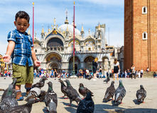 Piazza San Marco in Venice, Italy Stock Image