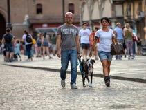 Piazza Trento Trieste i Ferrara, Italien Kvadrera i den historiska mitten av Ferrara, ett möteställe av medborgarskap och turiste royaltyfri bild