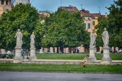 Piazzadelllaen valle, Padua, Italien Arkivbild