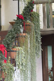 Piazzamitte mit Hängepflanzen und Töpfen auf Treppe gegen ein a Stockfotos