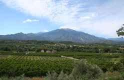 Pic du Canigou, Rousillon, France. Royalty Free Stock Photo