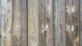 PIC en bois de fond Photos libres de droits