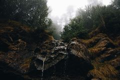 Foggy Forest landscape and a small waterfall stock images