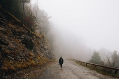Man walking in the foggy forest stock images