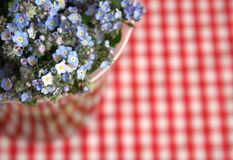 Pic nic. Blue flowers and checkered red background can be used as a pic-nic invitation Stock Images