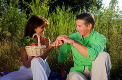 Pic nic Royalty Free Stock Images
