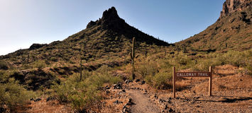 At the Picacho Peak Stock Photo
