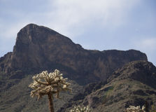 Picacho Peak Royalty Free Stock Image