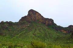 Picacho peak Stock Images