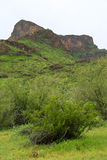 Picacho peak Royalty Free Stock Photography