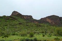 Picacho szczyt zdjęcia stock