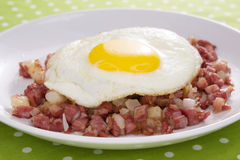 Picadillo y huevo de carne en lata Foto de archivo libre de regalías