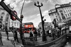 Picadilly Circus Royalty Free Stock Photo