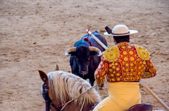 Picador in the bullfight Royalty Free Stock Image