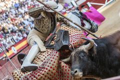 Picador bullfighter, lancer whose job it is to weaken bull's nec Stock Image