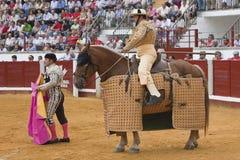 Picador bullfighter Stock Photography
