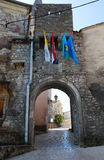 Pican Entrance Arch Royalty Free Stock Photo