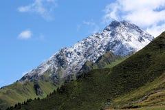 Picchi dell'alpe Fotografia Stock