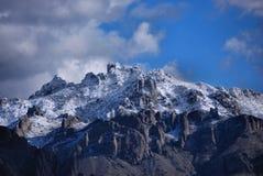 Picchi della neve Immagine Stock