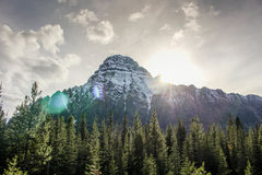Picchi di montagna in Alberta Canada Fotografia Stock Libera da Diritti