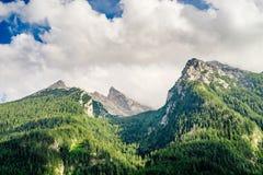Picchi di montagna coperti dalla foresta di conifere Immagini Stock