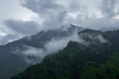 Picchi di montagna coperti di foresta sotto il cielo nuvoloso Immagine Stock Libera da Diritti