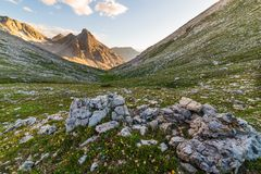 Picchi di montagna d'ardore e prato di fioritura Immagini Stock Libere da Diritti