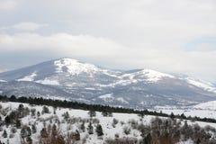 Picchi di montagna di Snowy Immagine Stock