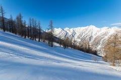 Picchi di montagna maestosi nell'inverno nelle alpi Fotografia Stock Libera da Diritti