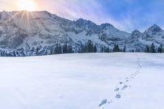 Picchi di montagna nell'inverno Immagine Stock