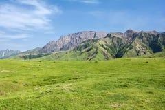 Picchi di montagna ondeggianti Immagini Stock
